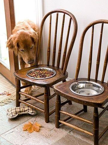 móveis para pets - Foto: buzzfeed