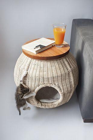 móveis para pets - Foto: designbump.com