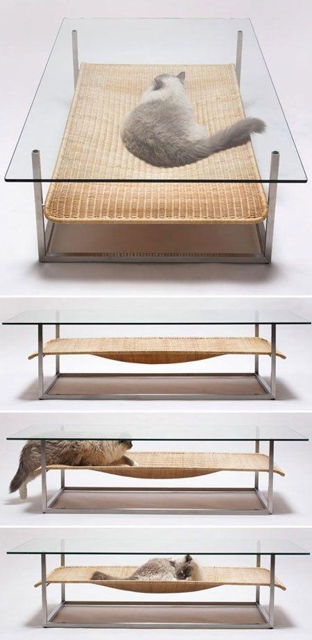 móveis para pets - Foto: indulgy.com